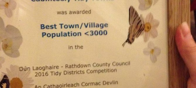 Double Win for Cabinteely Tidy Towns